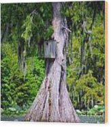 Nature's Tranquility Wood Print