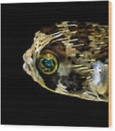 Naturescape 52 B Wood Print