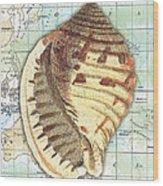Nautical Journey-c Wood Print