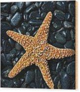 Nautical - Starfish On Black Rocks Wood Print