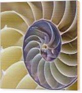 Nautilus Side View Wood Print