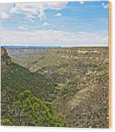 Navajo Canyon Overlook On Chapin Mesa Top Loop Road In Mesa Verde National Park-colorado Wood Print