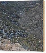 Navajo Canyon South View Wood Print