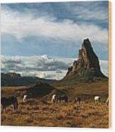Navajo Horses At El Capitan Wood Print