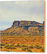 Navajo Nation Monument Valley Wood Print