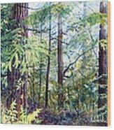 Navarro River Redwoods Wood Print