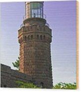 Navesink Twin Lights Lighthouse Wood Print