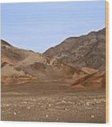 Nazca Desert Wood Print