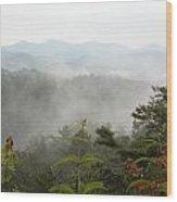 Nc Smokey Mountains Wood Print