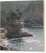 Neah Bay At Cape Flattery II Wood Print