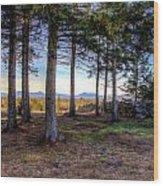 Near And Far Wood Print by Joe  Martin