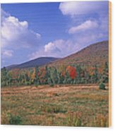 Near Peacham Vermont Wood Print