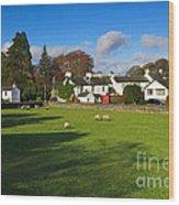 Near Sawrey In The Lake District Wood Print