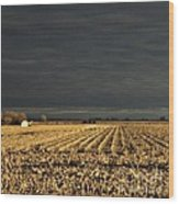 Nebraska Fields Wood Print
