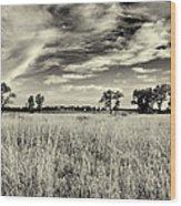 Nebraska Prairie One In Black And White Wood Print