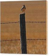 Nebraska's Bird Wood Print