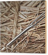 Needle In A Haystack Wood Print by Tom Mc Nemar