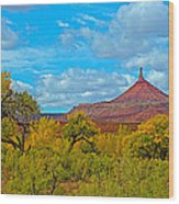 Needle-topped Butte From Highway 211 Going Into Needles District Of Canyonlands National Park-utah  Wood Print