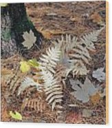 Needles And Leaves Wood Print