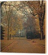 Neighborhood Street In Autumn Wood Print