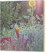 Neighboring Gardeners Wood Print