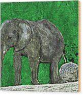 Nelly The Elephant Wood Print