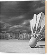 Nelson Akins Art Museum In Infrared Wood Print