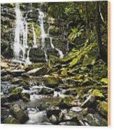 Nelson Falls Tasmania Wood Print