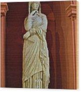 Nemesis In Antalya Archeological Museum-turkey Wood Print