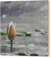 Nenufares Water Lilies Oleo Wood Print