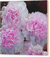 Neon Carnations Wood Print