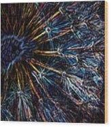 Neon Dandelion Wood Print