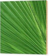 Neon Palm Reader Wood Print