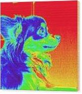 Neon Papillion Wood Print