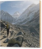 Nepal A Trekker On The Everest Base Wood Print