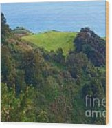 Nepenthe View At Big Sur In California Wood Print