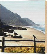 Neptune Beach Crow Wood Print