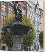 Neptune's Fountain - Gdansk Wood Print