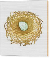 Nest And Egg Wood Print