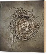 Nest Eggs Wood Print