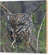 Nest Wood Print