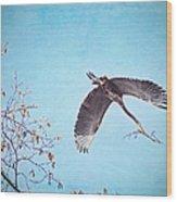 Nesting Heron Wood Print