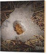 Nesting Leaf Wood Print