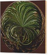 Nesting Pine Orb Wood Print