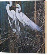 Nesting Snowy Egrets Wood Print
