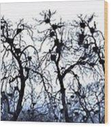 Chaos Is Nesting Wood Print by John Grace