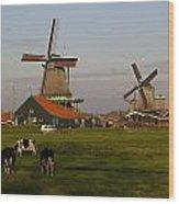 Netherlands Wood Print