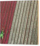 Netherlands, Tractor In Tulip Fields Wood Print
