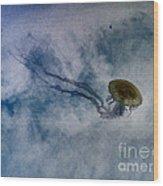 Nettlesphere Wood Print