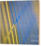 Network Wood Print by Maurizio Bacciarini